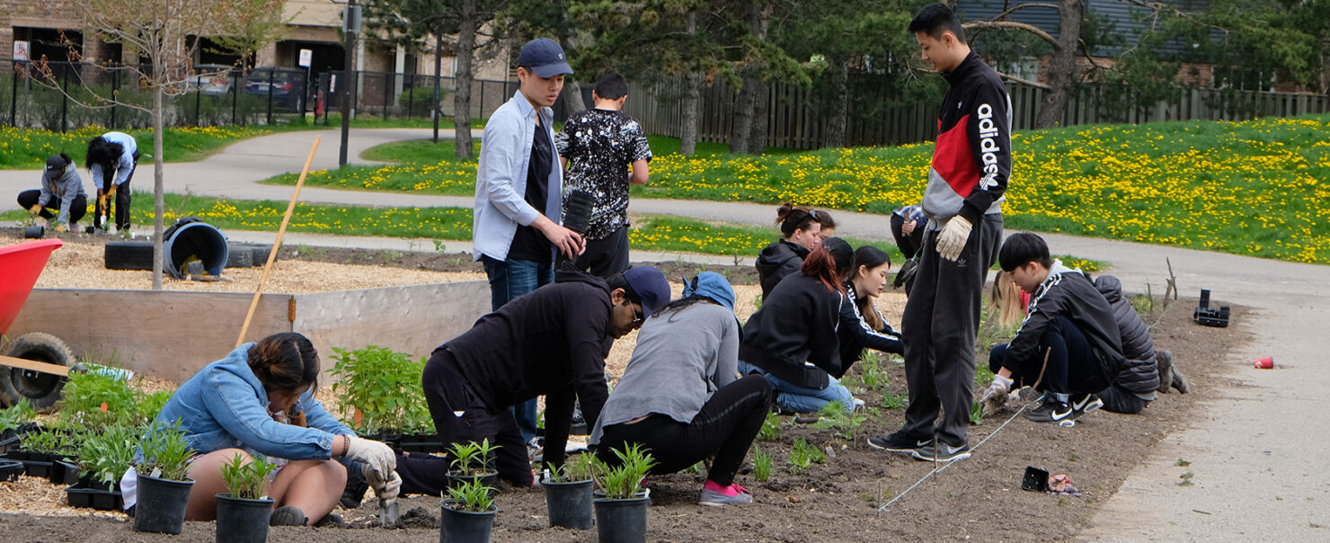 Sustainability Education and Nature Play